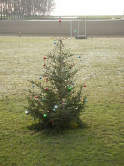 Sad Christmas tree at University of Lausanne