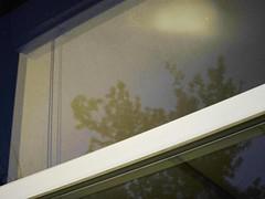 IMG_6646 (Eli Nixon) Tags: windows usa night iso3200 colorado ambientlight longmont lincolnstreet elinixon canons90 bohnfarm