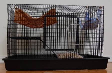 My new rat cage