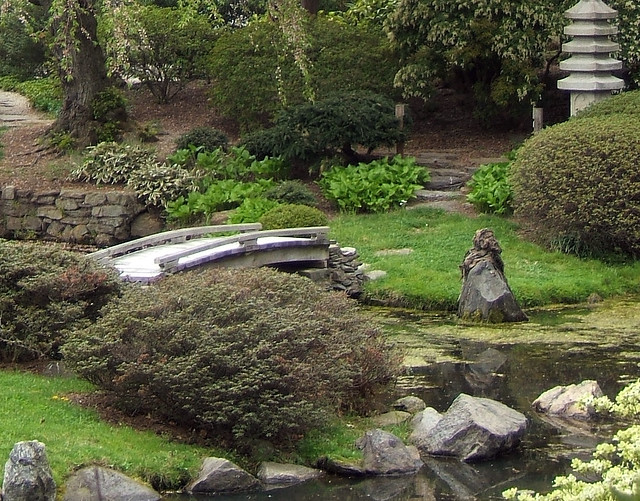 Surprise in a Japanese Garden