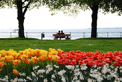 The spring on Bodensee, Austria (Namisan) Tags: park flowers lake water season austria österreich spring couple tulips lakeside fourseasons bodensee constance frühling tulpen 4seasons outstandingshots