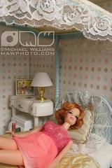 Cindy Whiteside Barbie Dioramas (MyLifeInPlastic.com) Tags: usa ny brooklyn vintage furniture stacy barbie diorama milady nprbarbie