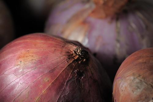 Full-sized -- Sigma 150mm f/2.8 sample -- Onions -- DSC_1209