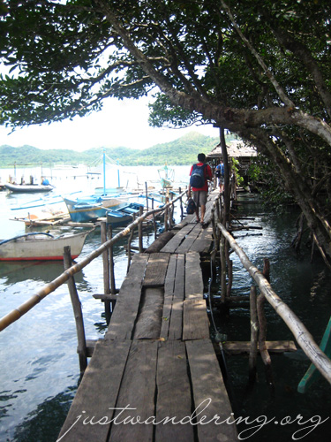 The rickety wooden bridge. And the mangrove. Hee.