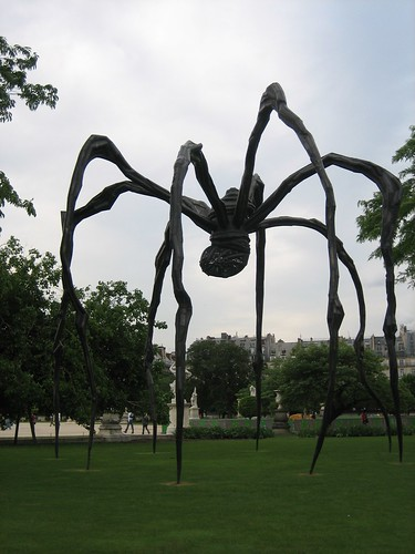 080528. arachnophobia.