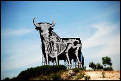 ESTOY EN LOS HUESOS! (ABUELA PINOCHO ) Tags: españa publicidad carretera esqueleto toro osborne gettyimages melancolia blueribbonwinner supershot haciamadrid tepasaste amazingshots megashot superlativas geo:lat=4015063459585591 geo:lon=323166851484973 a3b naturetculture allkindsofbeauty discoveryphotos jaipasbu madridvillarejodesalvanésa3pk54 yahayquetenerganas indultada atravesdelacamara