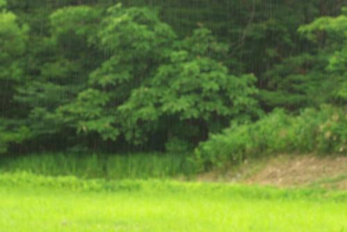 20080706003雨