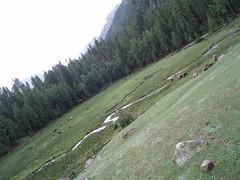 171. Tera Fairy Meadows (umasha79) Tags: himalaya northernareas karakoramhighway nangaparbat killermountain astore fairymeadows raikot ramalake