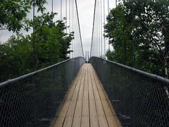 "Suspension Bridge (""Fishin"" Rod (off and on)) Tags: canon collingwood suspensionbridge sceniccaves fishinrod larawangpinoy canonfishinrod"
