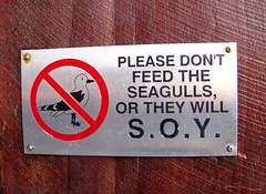 S.O.Y. (Filor) Tags: wood seagulls canon please you oz or under australia down powershot dont will perth shit western wa feed soy aussie fremantle occidentale gabbiani gabbiano afs legno divieto g9 intercultura filor waati