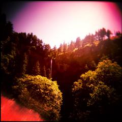 Oregon Trail (pixietart) Tags: travel trees usa nature oregon landscape waterfall holga xpro gorgeous columbia gorge