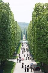Parc de Versailles (jver64) Tags: france versailles parcdeversailles