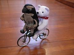 Pablito y nanuk en bicicleta, Pablitio es todo un experto a estas alturas