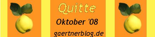 GKE_Oktober08_500x120