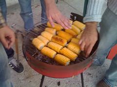 Mazorquísimas de Maíz (jmmerlos) Tags: maiz mazorca dnx comilona berrueco panochas