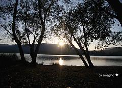 (iimagino) Tags: sunset sol canon de arbres catalunya octubre blau arbre calma pla llac tardor contrallum reflexes diumenge banyoles estany encant lestany raco iimagino