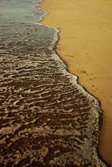 Coastline (Spike Fisher) Tags: sea shells seaweed beach paul sand weed bubbles pebbles foam fisher spike froth halliday spikefisher paulhalliday flickrlovers wwwpbhallidaycouk wwwpaulhalliadaysculpturecom wwwgardensculpurecouk