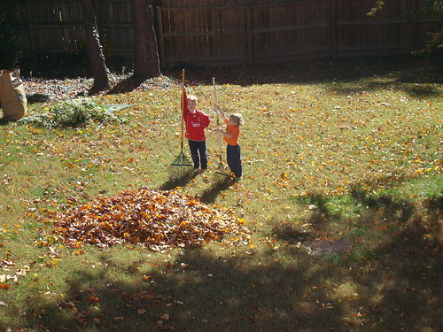 We're Raking!