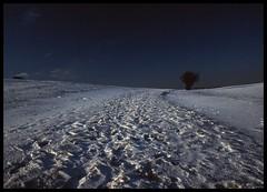Snowscape (philwirks) Tags: public grain picnik myfavs prismatic philrichards creativephoto cooliris yourbestphotography yourpreferredpicture show08 unlimitedphotos