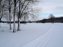Suusateed (j.anne4 ( Janne )) Tags: winter snow lumi skitracks talv olympuse400 welcometoestonia aplusphoto janne4janne vanagram suusarajad