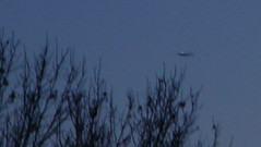 Cigar Shaped UFO not (Mully410 * Images) Tags: airplane fake cigar ufo aliens planes 100views 200views paranormal spacecraft hoax strangelights 25views photographytricks mully410