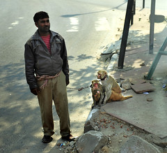 India New Delhi _D7C1964 (youngrobv) Tags: people india animal animals geotagged asian person monkey nikon asia asians locals indian monkeys indians local gps fx notc n1 bharat newdelhi macaque macaques uttarpradesh 70200mmf28gvr  0812 robale hindustan d700   youngrobv solmeta  d7c1964