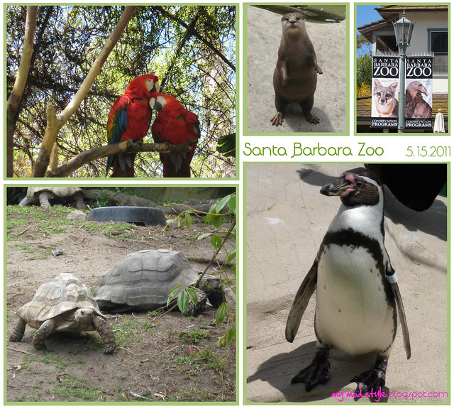 california sb zoo collage1