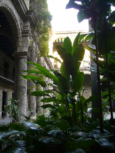 Museo的中庭-1