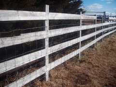 reclaimed field fence