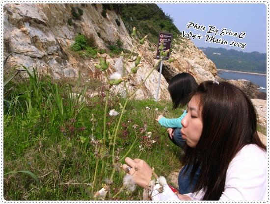 蔬菜公園+北海坑道 (16)