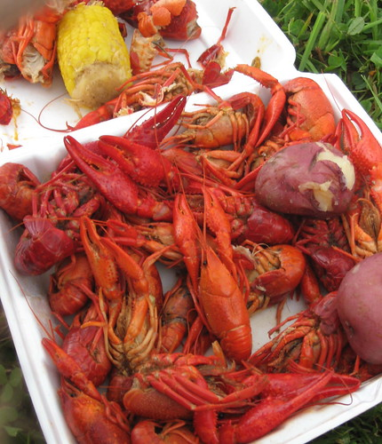 A Whole Mess of Crawfish