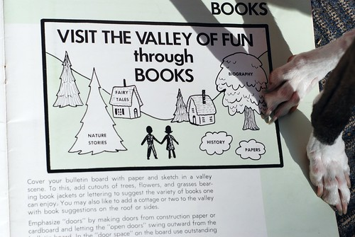 Visit The Valley Of Fun