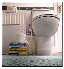 Where men go to read... (arcvascular) Tags: radio bathroom reading book nikon sony toilet read wc bbc restroom radio2 wogan sigma1020 d80 arcvascular nikond80challenge