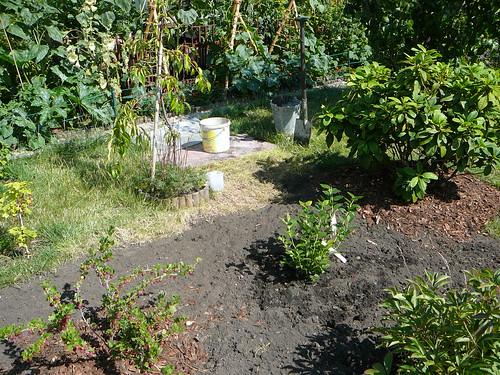 Anlage eines neuen Erdbeer- und Strauchobstbeetes