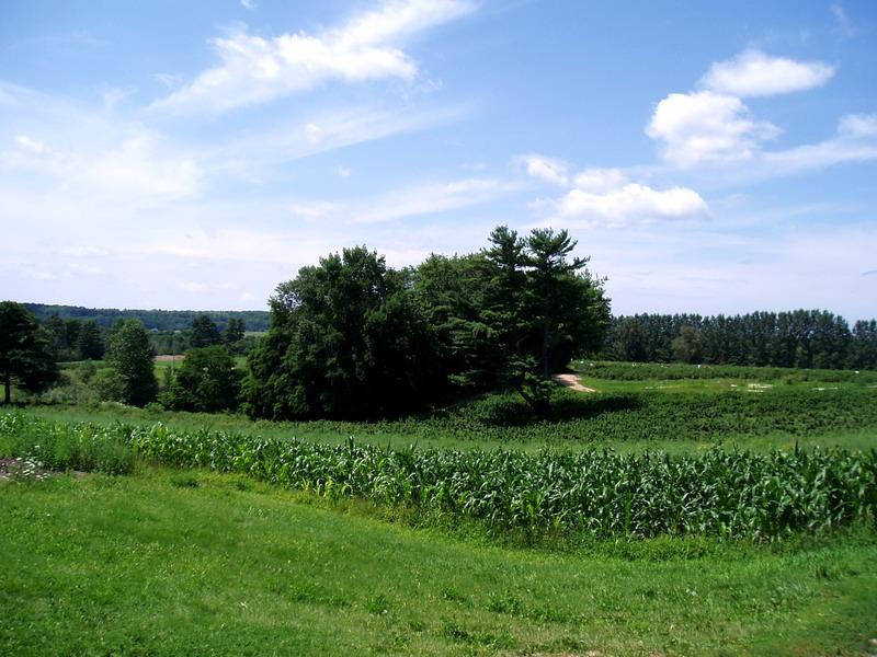 Andrews Scenic Acres (2)