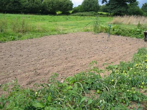 empty plot