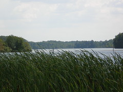 Michigan's Lake Ovid at Sleepy Hollow State Park