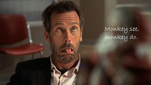 dr house md
