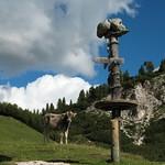 Facce da Rifugio Fodara thumbnail