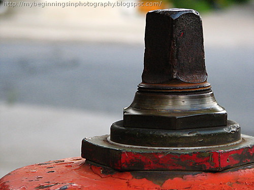 Fire Hydrant of Montreal