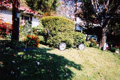 Old Fort Topiary 006
