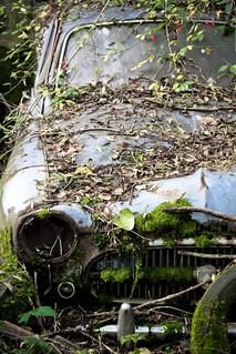 Autofriedhof Gürbetal