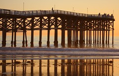 Crystal Pier (San Diego Shooter) Tags: california wallpaper pier sandiego piers pacificbeach desktopwallpaper crystalpier crystalpierhotel mywinners animalwallpaper sandiegowallpaper qlifeshowmay09 sandiegodesktopwallpaper