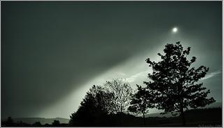 Rain Star