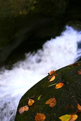 VWVortex com - Sullivan Falls