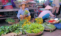 Hoi An Flower Lady (cwgoodroe) Tags: food art me beer river pig town october war asia village market an vietnam southeast hoi tailors danang checkens bambohats