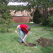 2008 Tree planting