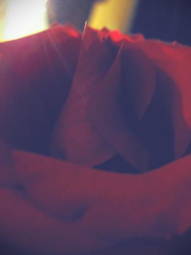rose day quotes. rose day quotes. Rose Day Quotes Pictures; Rose Day Quotes Pictures. Doctor Q. Apr 6, 03:48 PM