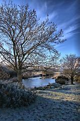 A River Runs Through It (Dan Baillie) Tags: tree ice water field river scotland nikon frosty portfolio dumfriesandgalloway ariverrunsthroughit puddock wigtownshire tarf danbaillie natureandnothingelse bailliephotographycouk bailliephotography wigtownshirephotographer dumfriesandgallowayphotography