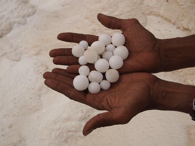 salt-pearls